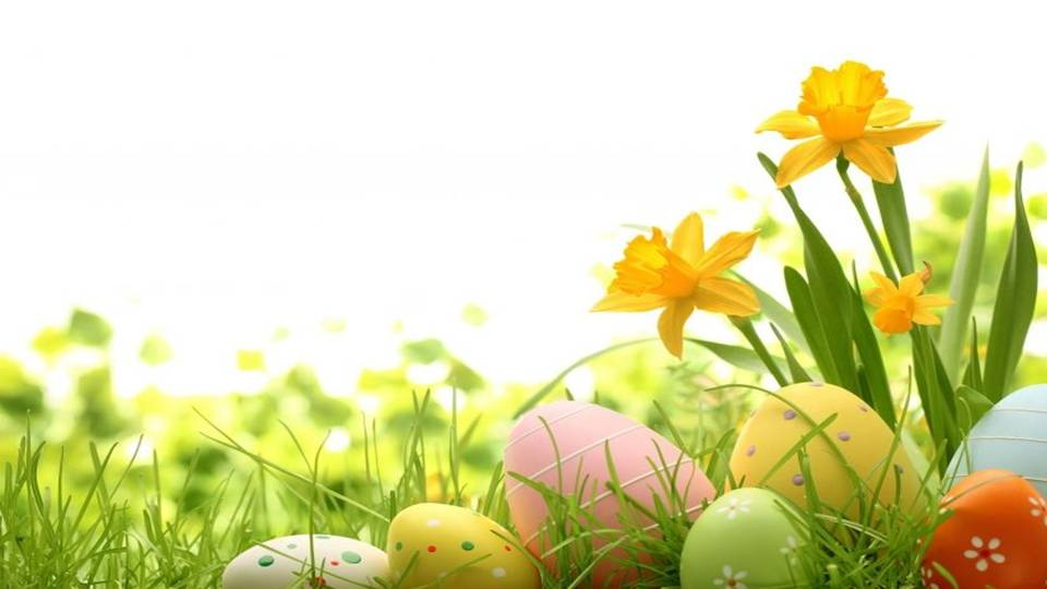 images/Spring-Fest.jpg